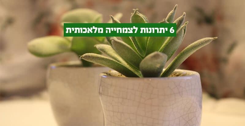 יתרונות צמחייה מלאכותית
