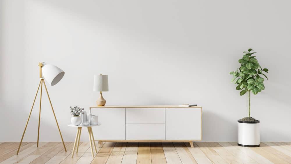 עיצוב הסלון עם עציץ