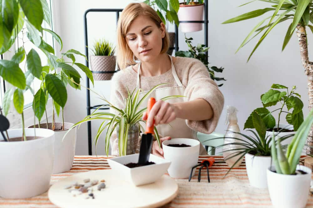 אישה מטפלת בצמחייה