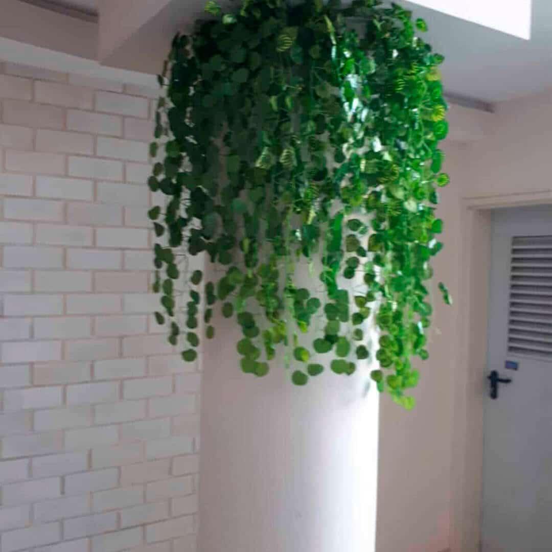 צמחיה מלאכותית נשפכת