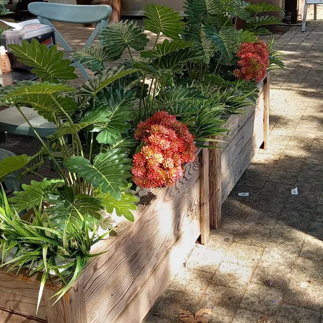 צמחיה מלאכותית בבית קפה בנתניה